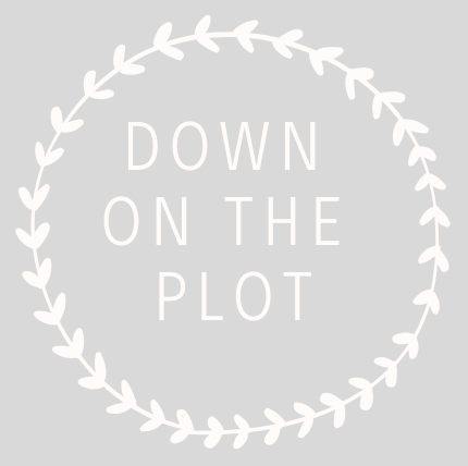Down on the Plot